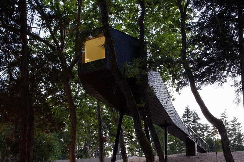 Pedras Salgadas Nature & SPA Park - Vila Real