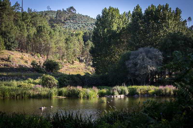 Casas Do Patio, Lda. Country Houses & Nature - Canas De Senhorim