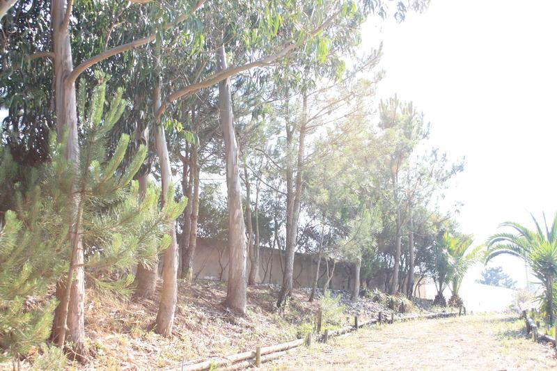 Golden Heritage Ericeira Villas - Ericeira