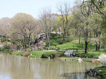 Central Park TV and Movie Sites Tour