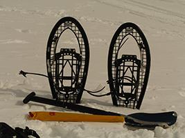 Grandvalira snowshoeing sightseeing experience