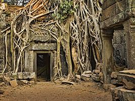 Half Day Sandstone Of Banteay Srei