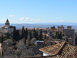 Alhambra guided tour and Flamenco show
