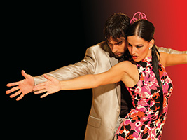 Tablao Palacio de Flamenco: 1st session, Flamenco y Olé- - Dinner: 18:00h - Show: 18:25h