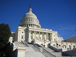 Washington DC Tour from New York