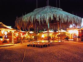 Christmas Offer: Badawya VIP