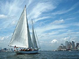 Crucero Shearwater