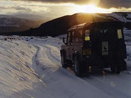 Scottish Highlands Safari