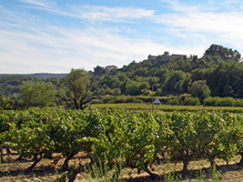 The best of Provence with Roussillon