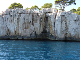 Cassis Calanques Cruise and Marseille Panoramic Tour