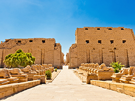 Visit to the Temple of Karnak