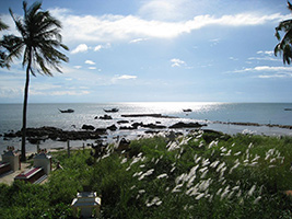 Full Day Cham Island Discovery From Hotel Inside Danang City Only