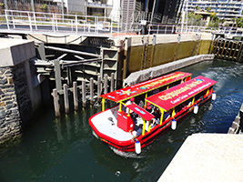 Canal Cruise in Cape Town