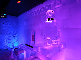 Amsterdam canal cruise with XtraCold Icebar visit