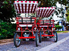 Athens and National Garden tour by 4 wheel bike