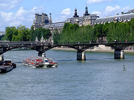 Paris minibus tour