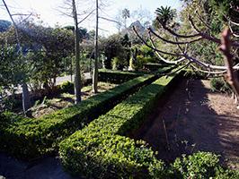 Jardines de alfabia mallorca mallorca for Jardines alfabia