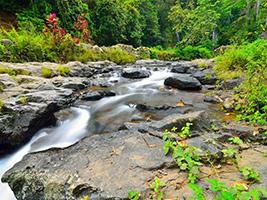 Waterfall Walk Tour (Benang Setokel And Benang Kelambu)