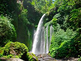 Sendang Gila Waterfall Walk Tour