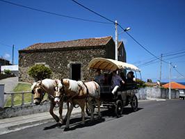 Rural ride Quinta das Raiadas in São Miguel
