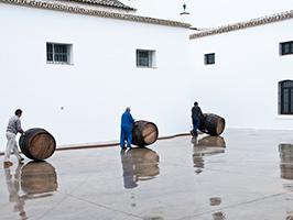 Winery Ruíz Contreras