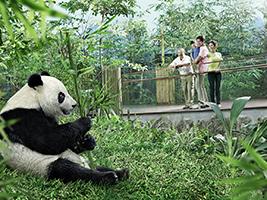 River Safari at Singapore wildlife park