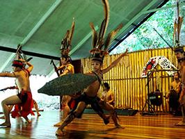 Half Day Mari-Mari Cultural Village