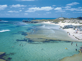 Full Day Discover Rottnest With Coach - DR1B