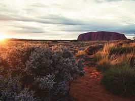 Uluru Sunrise Tour  - Y9