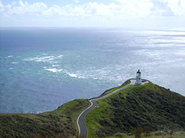 Full Day Cape Reinga Wanderer Via 90 Mile Beach From Hotel Inside Bay Of Islands City Only