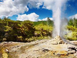 Full Day Rotorua Sights Included Hobbiton - GS39H