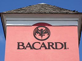 Bacardi Distillery and Old San Juan Shopping Tour