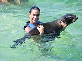 Dolphin Explorer - Aquatic Animals Adventure Park