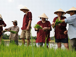 Full Day Farming And Fishing Life From Hotel Inside Danang City Only