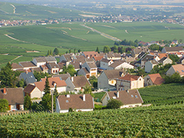 Champagne region tour from Paris