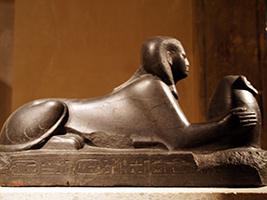 Private New Museum Nefertiti Tour with Transportation