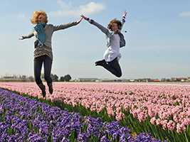Keukenhof Gardens and Haarlem Tour