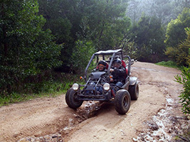 Sintra guided buggy adventure