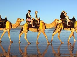 Souss-Massa National Park Camel Trek