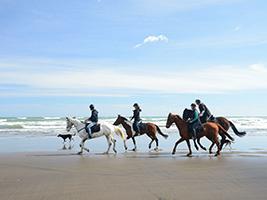 Horseriding in Mykonos