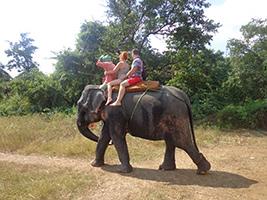 Elephant Ride in Ponda - private
