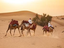 Heritage Camel Safari
