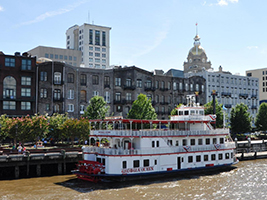 Land and sea Savannah tour