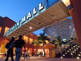 Dolphin Mall Tour