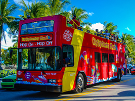 Hop on Hop off Tour with 1 Day Theme Park Admission