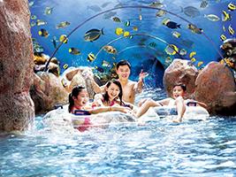 Universal Studios®, S.E.A. Aquarium and Adventure Cove Waterpark