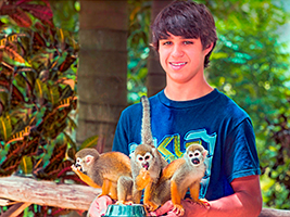 Monkey Land safari