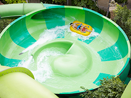 Adventure Cove Waterpark - with transfer