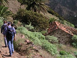 Trekking on the wild north of La Gomera - Gomera