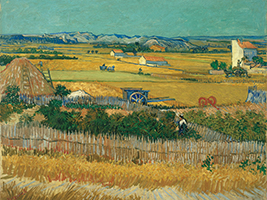 Hop on - hop off bus tour and Van Gogh Museum